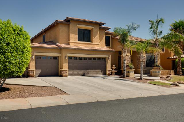 18438 W Mauna Loa Lane, Surprise, AZ 85388 (MLS #5947246) :: CC & Co. Real Estate Team