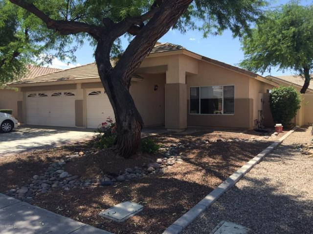 1521 E Robinson Way N #800, Chandler, AZ 85225 (MLS #5947318) :: Team Wilson Real Estate