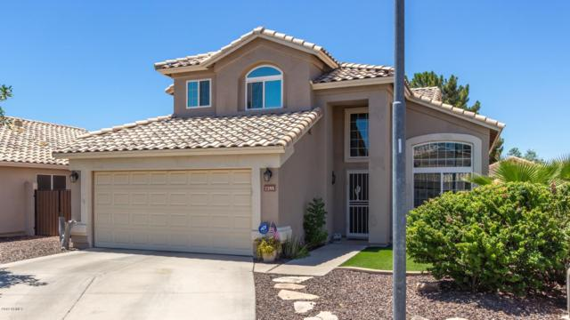 7355 W Hill Lane, Glendale, AZ 85310 (MLS #5947364) :: CC & Co. Real Estate Team