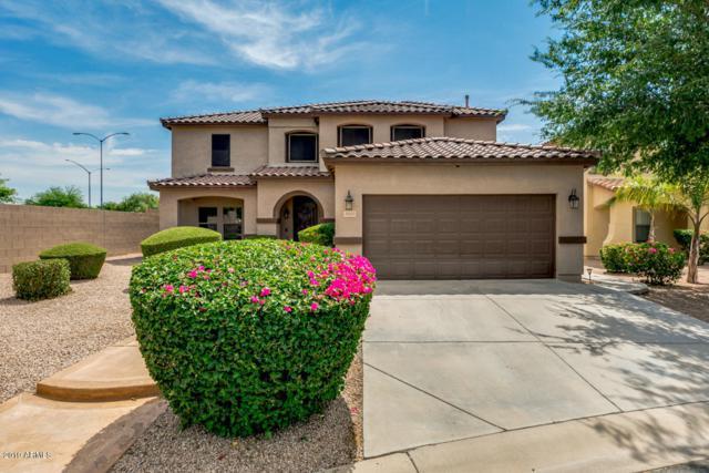 3043 S Sierra Heights Circle, Mesa, AZ 85212 (MLS #5947462) :: CC & Co. Real Estate Team