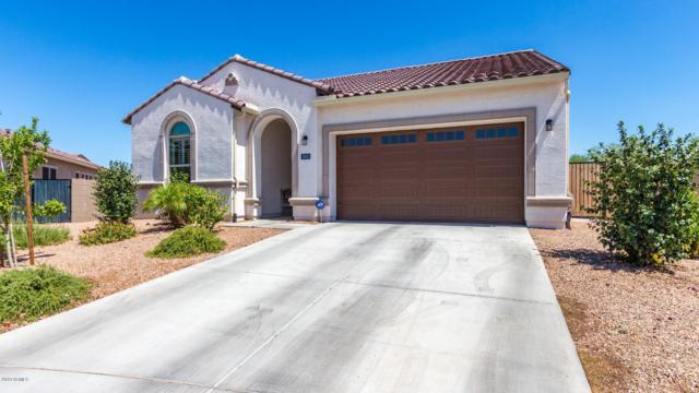 1003 E Knightsbridge Way, Gilbert, AZ 85297 (MLS #5947521) :: Revelation Real Estate