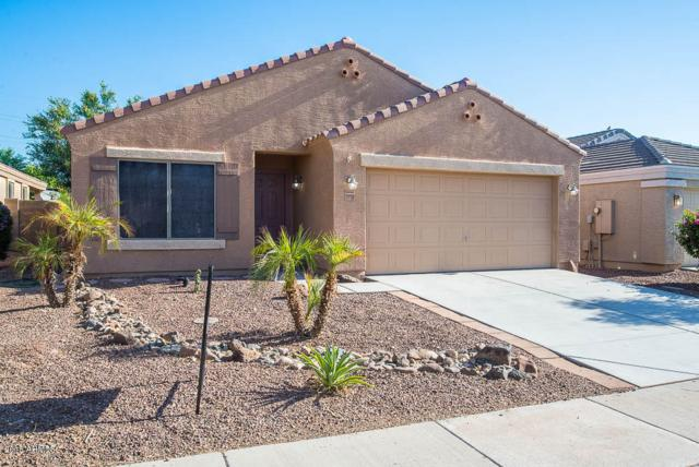 11724 W Tierra Grande, Sun City, AZ 85373 (MLS #5947605) :: The Kenny Klaus Team