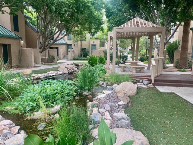 101 N 7th Street #245, Phoenix, AZ 85034 (MLS #5947643) :: Devor Real Estate Associates