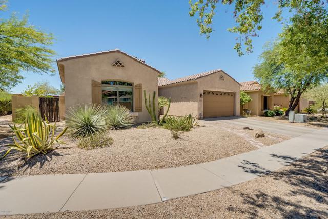 8826 S 20th Place, Phoenix, AZ 85042 (MLS #5947701) :: CC & Co. Real Estate Team