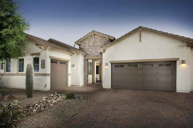 1121 E Holbrook Court, Gilbert, AZ 85298 (MLS #5947711) :: Revelation Real Estate