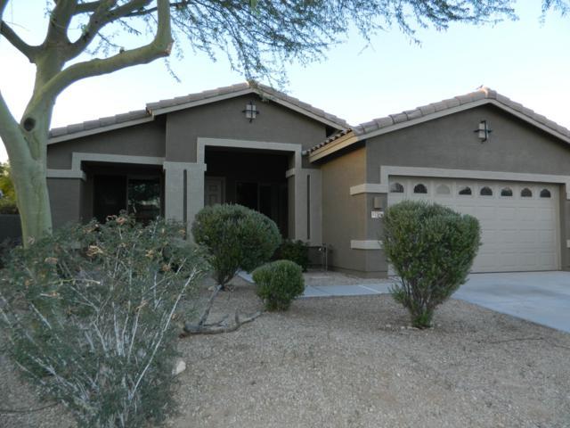 17504 W W Desert View Ln Lane, Goodyear, AZ 85338 (MLS #5947729) :: Kortright Group - West USA Realty