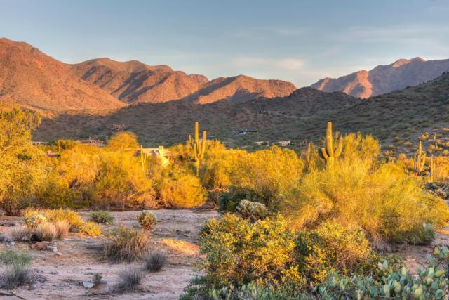 22805 N Church Road, Scottsdale, AZ 85255 (MLS #5947733) :: The W Group