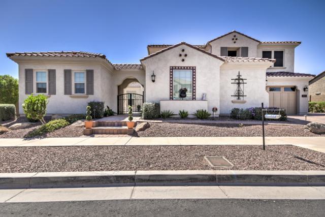 3015 E Branham Lane, Phoenix, AZ 85042 (MLS #5947737) :: CC & Co. Real Estate Team