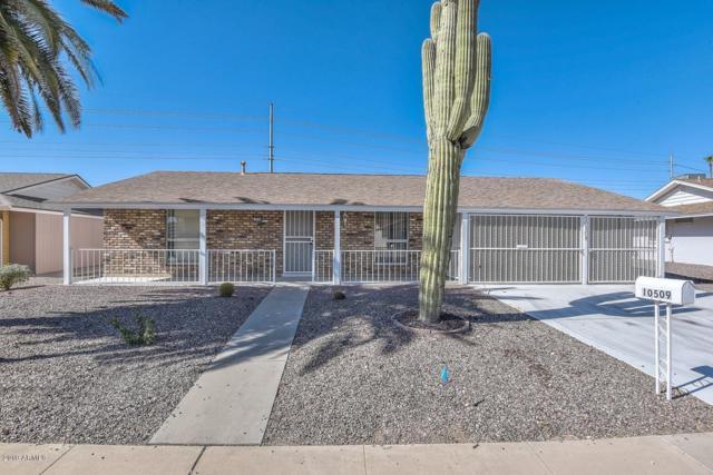 10509 W Caron Drive, Sun City, AZ 85351 (MLS #5947775) :: REMAX Professionals