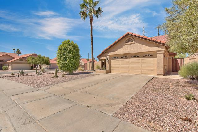 14604 S 41ST Place, Phoenix, AZ 85044 (MLS #5947779) :: Yost Realty Group at RE/MAX Casa Grande