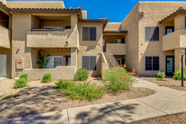 9451 E Becker Lane #1035, Scottsdale, AZ 85260 (MLS #5947783) :: Yost Realty Group at RE/MAX Casa Grande