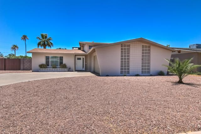 4536 S Forest Avenue, Tempe, AZ 85282 (MLS #5947800) :: Riddle Realty