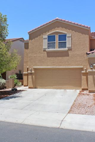 13446 N 87TH Lane, Peoria, AZ 85381 (MLS #5947843) :: Santizo Realty Group