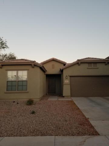 42247 W Balsa Drive, Maricopa, AZ 85138 (MLS #5947848) :: Revelation Real Estate
