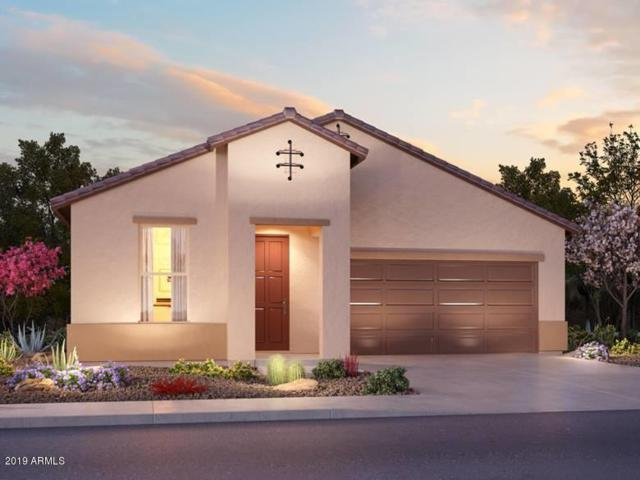 636 N San Ricardo Court, Casa Grande, AZ 85194 (MLS #5947880) :: The Kenny Klaus Team