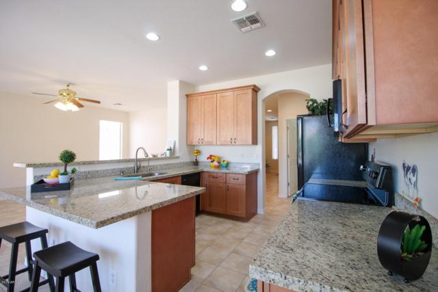 148 E Macaw Court, San Tan Valley, AZ 85143 (MLS #5947933) :: Revelation Real Estate