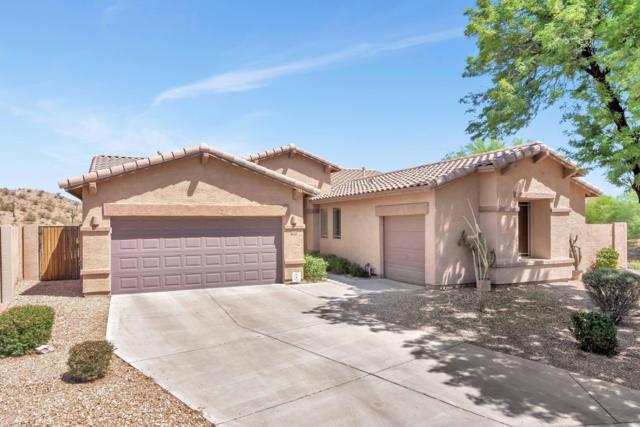 18440 W Mcneil Street, Goodyear, AZ 85338 (MLS #5947949) :: Conway Real Estate