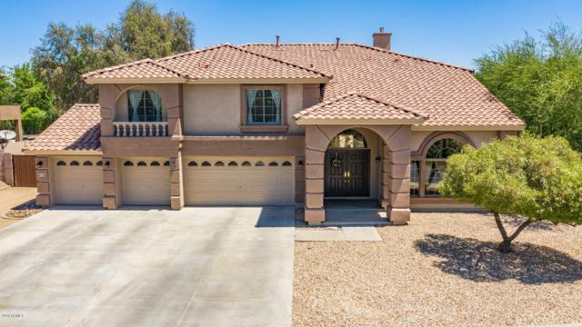 13602 W Denton Street, Litchfield Park, AZ 85340 (MLS #5948012) :: CC & Co. Real Estate Team