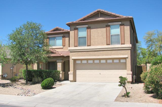2176 S 160TH Lane, Goodyear, AZ 85338 (MLS #5948013) :: CC & Co. Real Estate Team