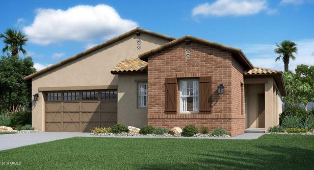 19878 W Glenrosa Avenue, Litchfield Park, AZ 85340 (MLS #5948016) :: The Garcia Group