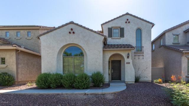 1964 W Faria Lane, Phoenix, AZ 85023 (MLS #5948033) :: Revelation Real Estate