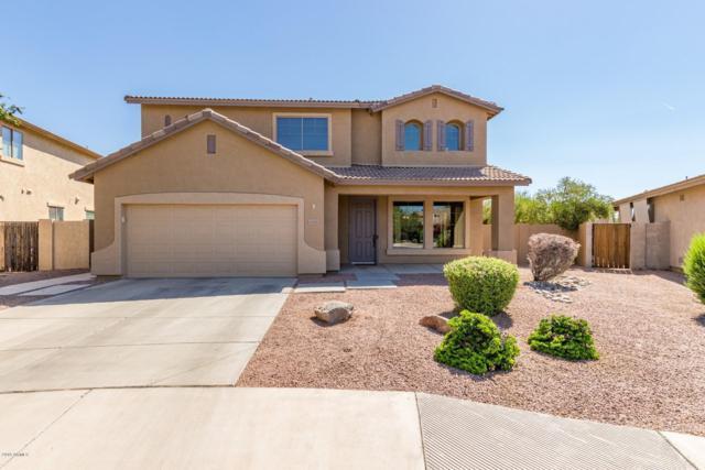 6578 S Cartier Drive, Gilbert, AZ 85298 (MLS #5948037) :: CC & Co. Real Estate Team