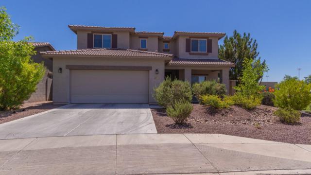 16533 N 180TH Drive, Surprise, AZ 85388 (MLS #5948046) :: Revelation Real Estate