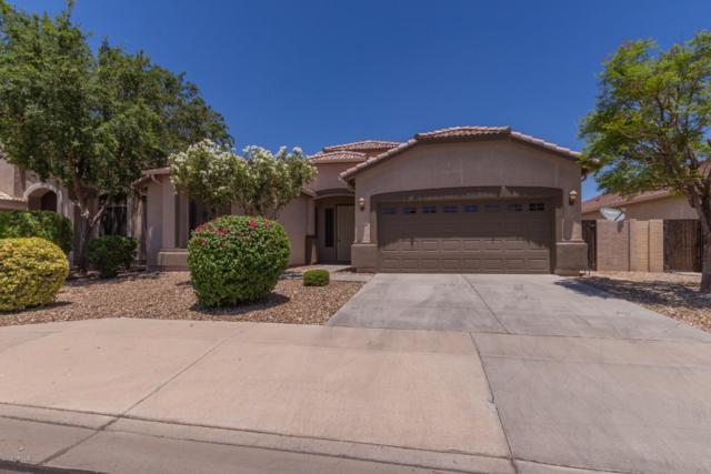 13218 W Citrus Way, Litchfield Park, AZ 85340 (MLS #5948115) :: CC & Co. Real Estate Team