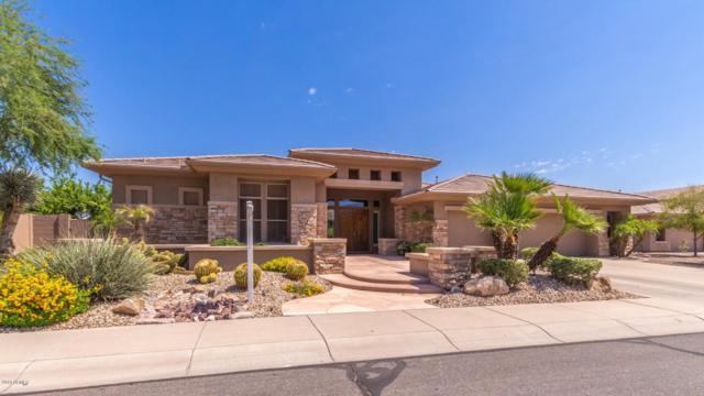 13118 W Rovey Court, Litchfield Park, AZ 85340 (MLS #5948149) :: CC & Co. Real Estate Team