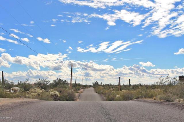 12696 N Hohokam Road, Florence, AZ 85132 (MLS #5948166) :: Occasio Realty