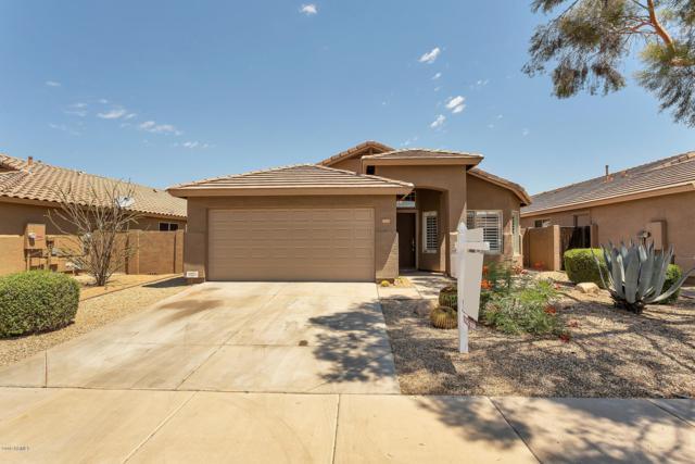 4322 E Tether Trail, Phoenix, AZ 85050 (MLS #5948205) :: Keller Williams Realty Phoenix