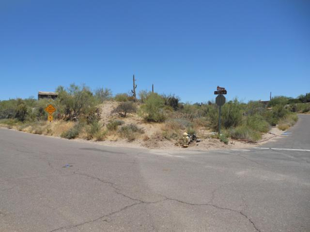 8439 E Dogleg Drive, Carefree, AZ 85377 (MLS #5948229) :: Riddle Realty