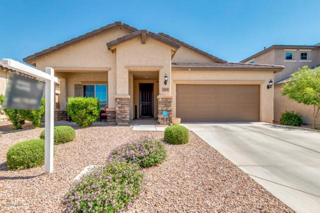 11137 E Topaz Avenue, Mesa, AZ 85212 (MLS #5948244) :: Team Wilson Real Estate