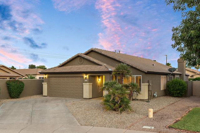 3981 E Kroll Court, Gilbert, AZ 85234 (MLS #5948247) :: Team Wilson Real Estate