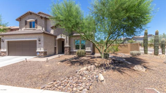 1640 W Cavedale Drive, Phoenix, AZ 85085 (MLS #5948251) :: The Laughton Team