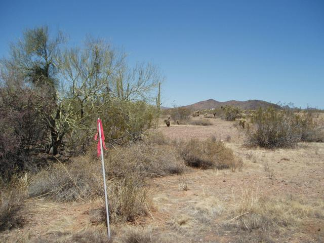 0 W Carefree Highway, Unincorporated County, AZ 85361 (MLS #5948254) :: Team Wilson Real Estate