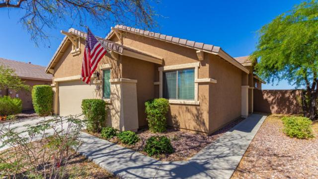 1885 W Owens Way, Anthem, AZ 85086 (MLS #5948321) :: Team Wilson Real Estate