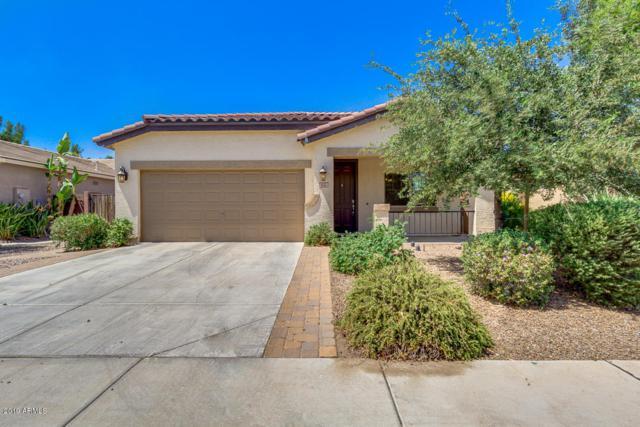 832 W Press Road, San Tan Valley, AZ 85140 (MLS #5948373) :: Kepple Real Estate Group