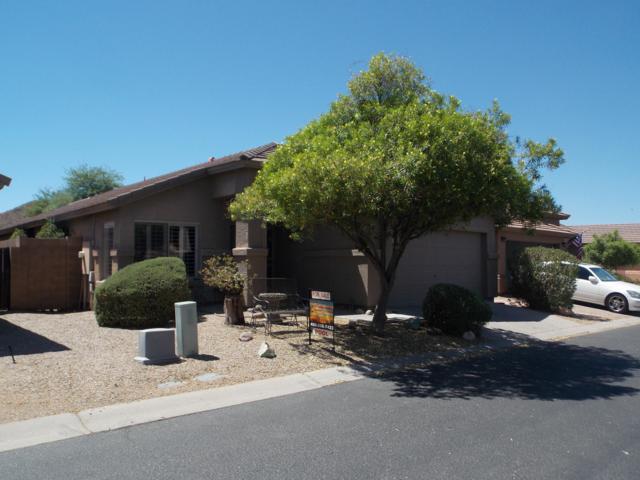 31351 N Claridge Circle, San Tan Valley, AZ 85143 (MLS #5948380) :: CC & Co. Real Estate Team
