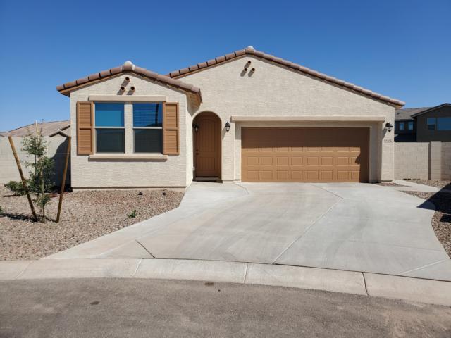 12205 W Hide Trail, Peoria, AZ 85383 (MLS #5948392) :: CC & Co. Real Estate Team