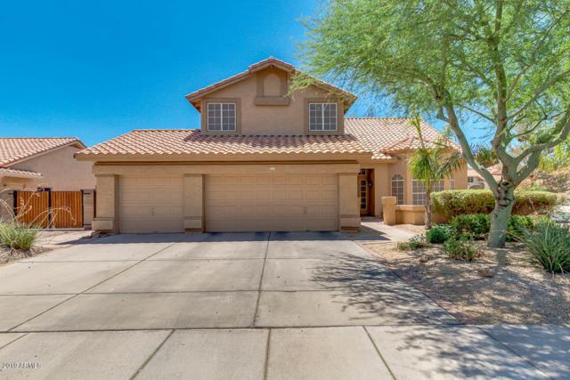 521 N Saguaro Street, Chandler, AZ 85224 (MLS #5948471) :: The Pete Dijkstra Team