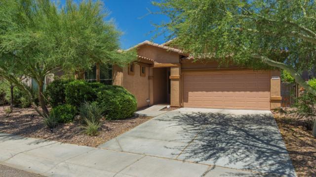 42031 N 45TH Drive, Phoenix, AZ 85086 (MLS #5948567) :: Riddle Realty