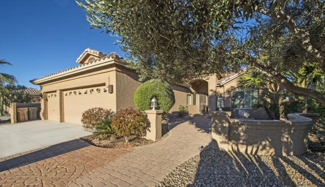 24140 S Lakeway Circle NW, Sun Lakes, AZ 85248 (MLS #5948614) :: Revelation Real Estate