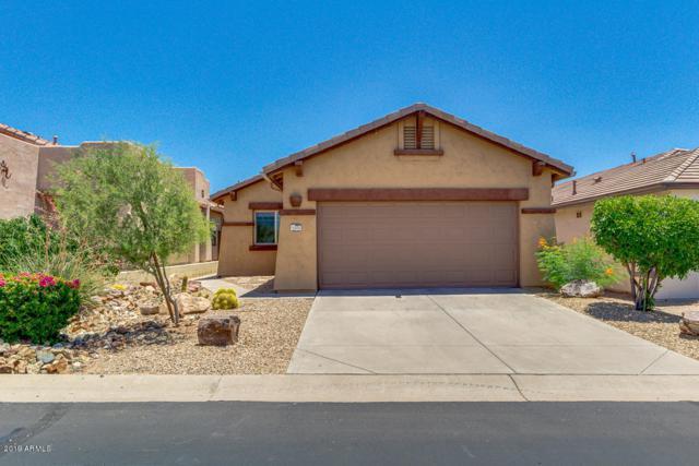 10005 E Meandering Trail Lane, Gold Canyon, AZ 85118 (MLS #5948624) :: Yost Realty Group at RE/MAX Casa Grande