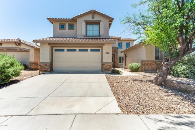 2547 W Shackleton Drive, Phoenix, AZ 85086 (MLS #5948637) :: Team Wilson Real Estate
