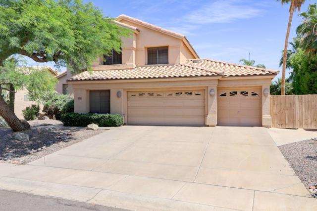 9078 E Butherus Drive, Scottsdale, AZ 85260 (MLS #5948656) :: CC & Co. Real Estate Team
