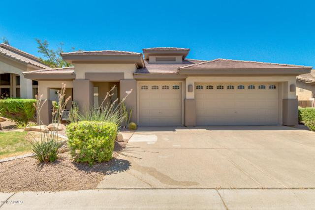 7355 E Nance Street, Mesa, AZ 85207 (MLS #5948704) :: CC & Co. Real Estate Team