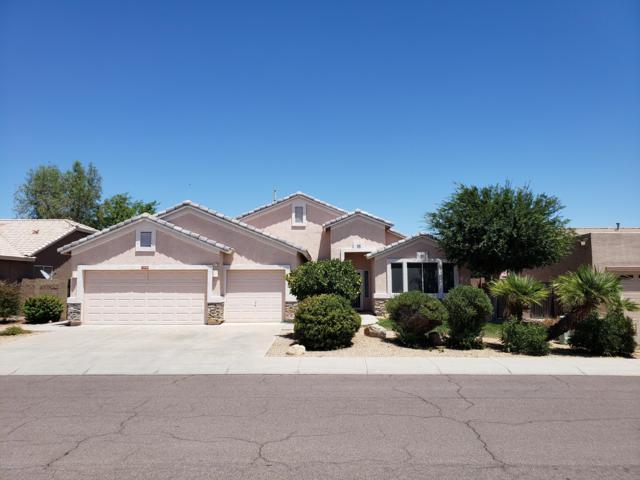 11523 N 85th Drive, Peoria, AZ 85345 (MLS #5948795) :: My Home Group