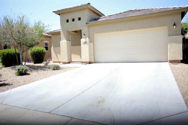 18214 W Eva Street, Waddell, AZ 85355 (MLS #5948797) :: CC & Co. Real Estate Team