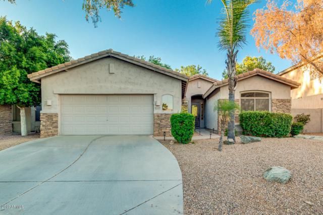 1674 E Washington Court, Gilbert, AZ 85234 (MLS #5948854) :: CC & Co. Real Estate Team